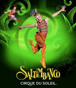 saltimbanco-circo-del-sol