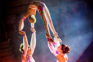 bellisismo-circo