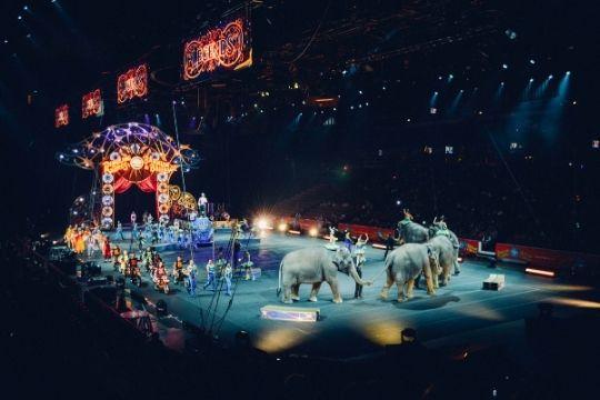 entradas circo universal esparraguera
