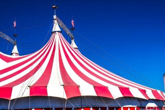 carpa circo holiday valladolid