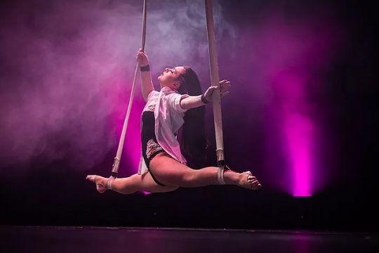 show circo élite