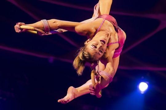 contorsionista circo