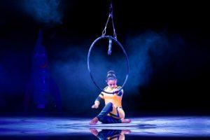 artista circo stellar